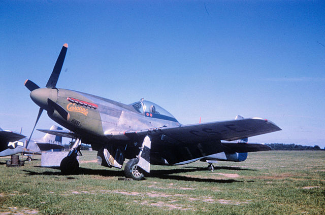 359th Fighter Group P 51D Mustang 44 13893